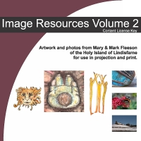Image Resources - Volume 2 - Download